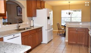412-roadrunner-avenue-new-braunfels-texas-78130-kitchen